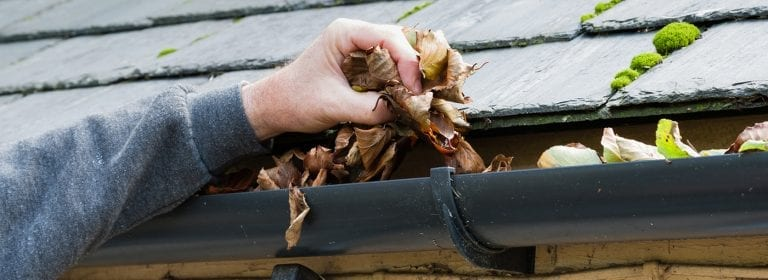 Gutter cleaning example